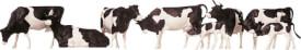 H0 Kühe, schwarz gefleckt